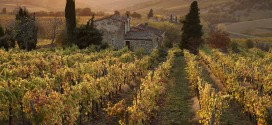 Donde dije vino digo Italia