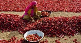 10 lugares que hay que visitar en la india