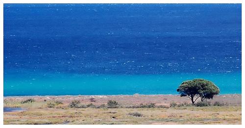 Playa Su Tiriarzu de Posada