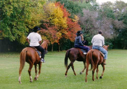 turismo rural caballos