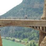 El puente colgante en el desfiladero