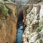 El rio guadalhorce y un puente
