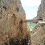 El puente colgante desde lejos