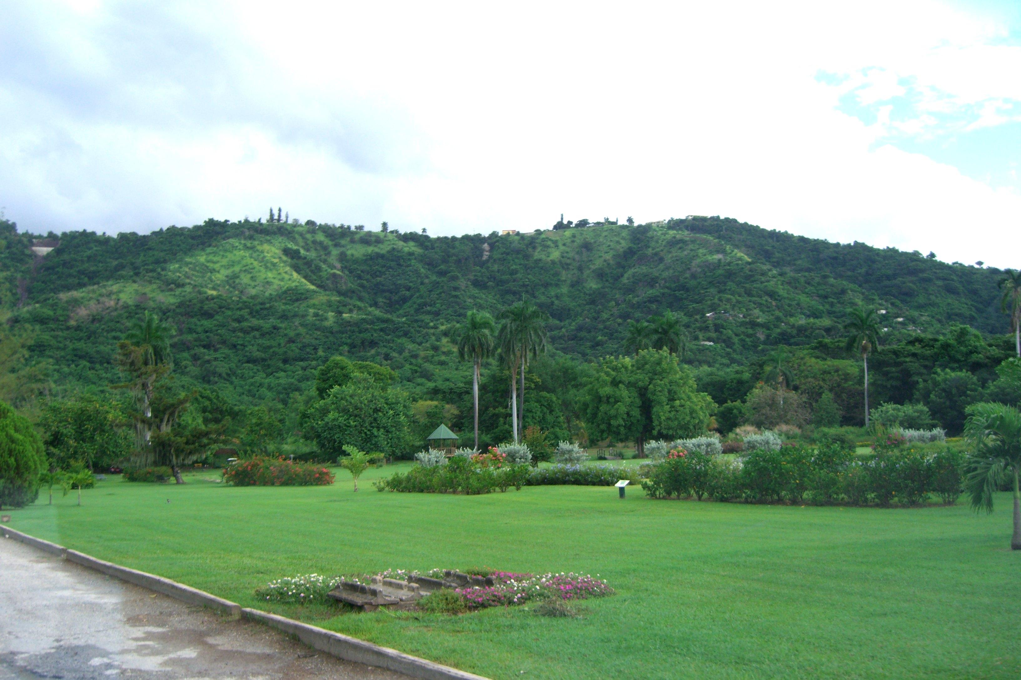 Hope Botanical Gardens, Jamaica